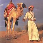 Правила поведения и запреты для туристов в Эмиратах.