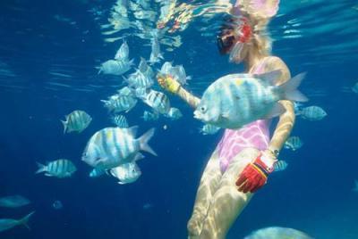 Экскурсии на Бали от туроператора Coral Travel