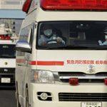 ВЯпонии упал впропасть туристический автобус