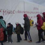 Турция с почтением относится ккритике исвободе слова— Давутоглу