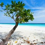 Таиланд навсегда закрывает для туристов «райский» остров