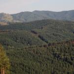 Камчатка— один излидеров категории «приключенческий отдых» журнала National Geographic