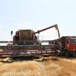 Минсельхоз сказал размер пошлин наввоз русских продуктов вТурцию