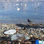 Жители России завалилиОП жалобами назагрязненные пляжи русских курортов
