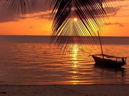 Занзибар лучший отдых: остров Пемба или Гуджа
