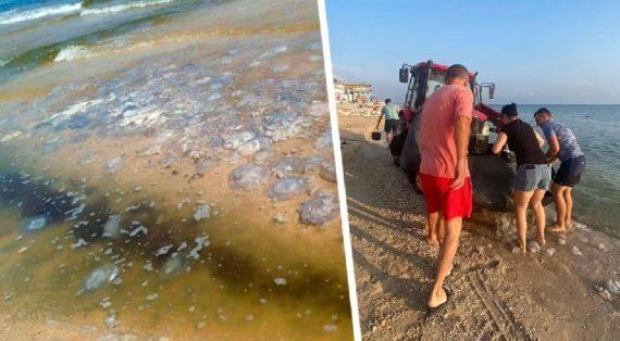 Медузы сорвали туристический сезон на российском курорте