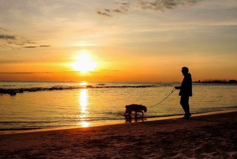 На пляжах Италии выявлять больных ковидом с температурой будут с помощью дронов