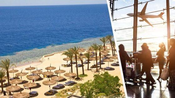 Сотни новых рейсов на курорты Египта для российских туристов