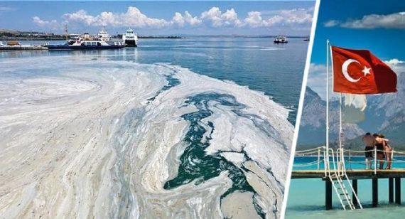 На пляжах Турции морская слизь начала менять цвет воды на серый, убивая всю живность