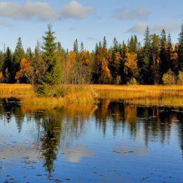 Астраханская область втопе регионов для экотуризма и отдыха