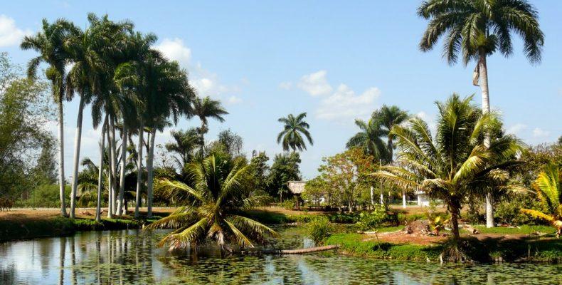 Путешествие на Крокодиловую ферму на Кубе