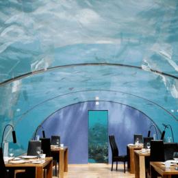 На Мальдивах за 50 000 долларов туристы могут поспать с рыбами