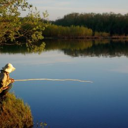 Россиян обложат новым налогом на рыбалку
