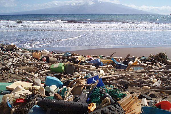 Турбизнес приближает экологическую катастрофу